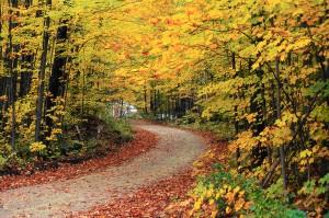 ako relaxovať v jeseni