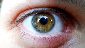 zaujímavosti o oku