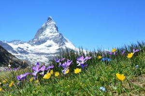 horskej prírody